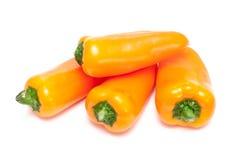 Paprica arancione Immagini Stock Libere da Diritti
