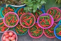 Paprica dei peperoncini rossi caldi (peperoncino rosso Padi, peperoncino rosso dell'occhio dell'uccello, peperoncini rossi dell'u Fotografia Stock