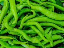 Paprica des grünen Paprikas stockfotos