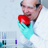 Paprica DNA Stock Photography