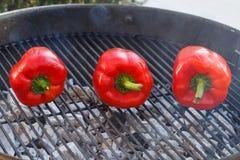 Paprica grillé sur la grille photos stock