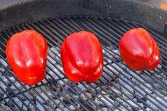 Paprica grillé sur la grille photo libre de droits