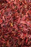 Paprica rossa che cresce a Betlemme della Galilea Fotografia Stock Libera da Diritti