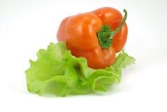 Paprica rosso su insalata fresca Immagine Stock Libera da Diritti