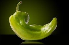 Paprica verde Immagini Stock Libere da Diritti