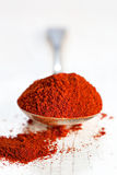Paprika. Sweet paprika, on an old silver spoon on rustic timber. Very shallow dof stock image