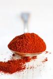 paprika Fotografering för Bildbyråer