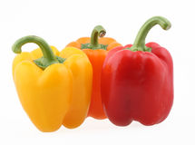 Paprika. Fresh paprika isolated on white with clipping path Stock Image
