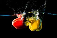 paprika Royaltyfri Fotografi