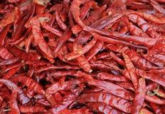 Paprika stockbild