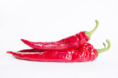 paprika Imagem de Stock