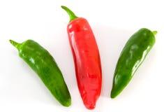Paprika stockbilder