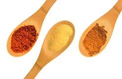 Paprika, alho, e especiarias da canela em três colheres de madeira isoladas em um fundo branco Imagens de Stock Royalty Free