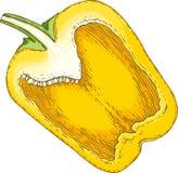 Paprika amarillo en el corte transversal Imagen de archivo libre de regalías