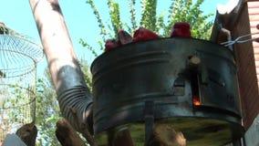 Paprika On Barbecue vermelha de giro video estoque