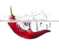 Paprika candente en agua imagen de archivo