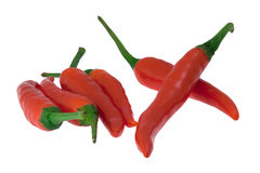 Paprika (Chili). Isolated with white background color Stock Photo