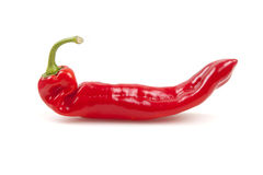 Paprika Chili Pepper rouge Images stock