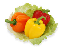 Paprika colorida com alface. Fotos de Stock