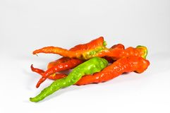 Paprika composition. Royalty Free Stock Photo