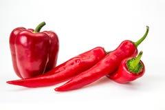 Paprika da pimenta em um fundo branco Fotografia de Stock
