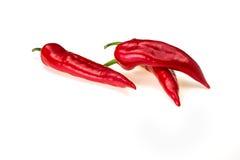 Paprika da pimenta em um fundo branco Imagens de Stock
