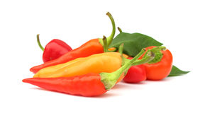 Paprika de las pimientas de chile Imagen de archivo
