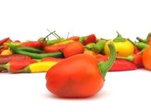 Paprika de las pimientas de chile en plato de madera Fotografía de archivo libre de regalías