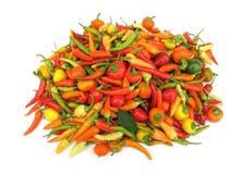 Paprika de las pimientas de chile en plato rojo Foto de archivo libre de regalías