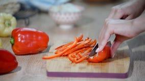 Paprika del corte Fabricación de la tortilla con el pollo y el paprika metrajes