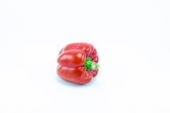 Paprika dulce aislado en el fondo blanco Fotografía de archivo libre de regalías