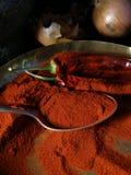 Paprika et épices Photo stock