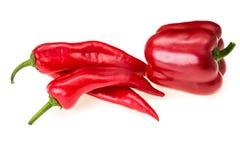 Paprika för röd peppar Royaltyfria Bilder