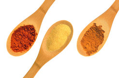Paprika, garlic, and cinnamon spices on three wood spoons isolated on a white background Royalty Free Stock Images