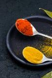 Paprika, Gelbwurz und Lorbeerblatt Stockfoto