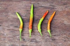Paprika grüner und roter und frischer Paprika Paprika auf hölzernem backgroun Lizenzfreies Stockfoto