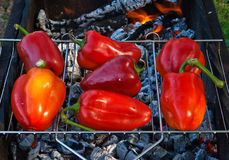 Paprika on grill Stock Photos