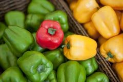 Paprika, groene paprika, groenten Stock Foto's