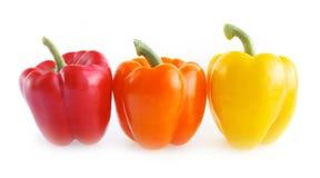 Paprika isolated. Fresh colorful paprika isolated on white background royalty free stock photography