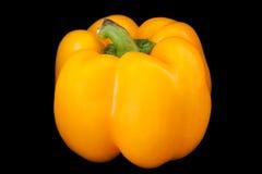 Paprika jaune Image libre de droits