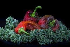 Paprika and kale Stock Image