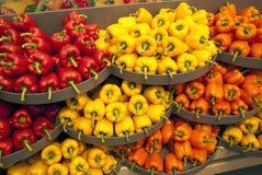Paprika on market. Different colorful paprika on market Stock Photos