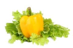 Paprika mit Salat Lizenzfreies Stockfoto