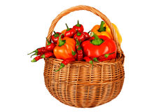 Paprika mix. In basket different paprika mix Royalty Free Stock Images