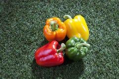 Paprika op gras royalty-vrije stock afbeeldingen