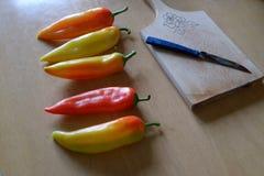 Paprika på en tabell Royaltyfria Bilder