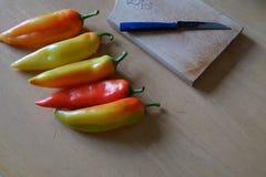 Paprika på en tabell Royaltyfri Foto
