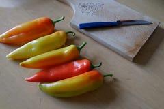 Paprika på en tabell Royaltyfri Fotografi