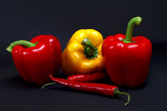 Paprika with peperoni royalty free stock photos