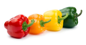 Paprika (pepper bell), red, orange, yellow, green Stock Images